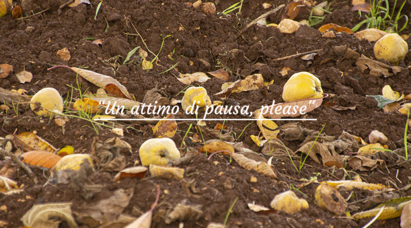 """Un attimo di pausa, please"" ….documentando."