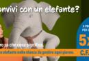 Nasce in citta' Club Itaca Lecce: obiettivo  l'autonomia per chi soffre di disagio mentale