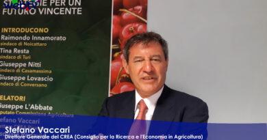 Agricoltura: parte il Percorso Condiviso per la Valorizzazione della Ciliegia di Puglia