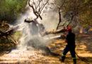 Ricostruire l'Ambiente in Salento. Tavolo Tecnico in Regione con le organizzazioni Sindacali