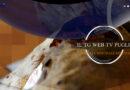 Giornata Mondiale del Pane 2021: il 16 ottobre si è celebrato il Pane di Altamura Dop( Speciale  World Bread Day )